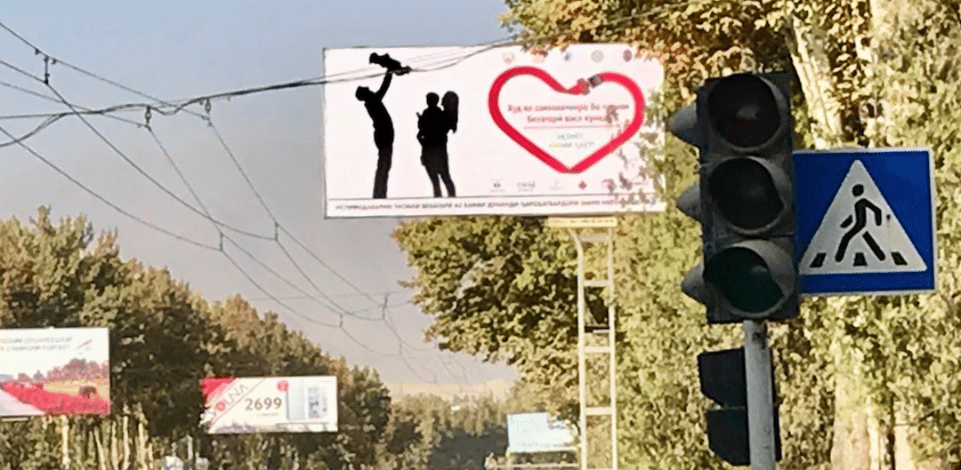 The number of people wearing seat belts in Dushanbe increases after campaign
