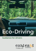 Eco-driving guidance for drivers